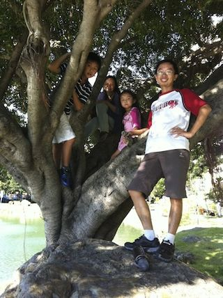中興大學爬樹