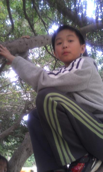 樹-爬樹-好高-130304