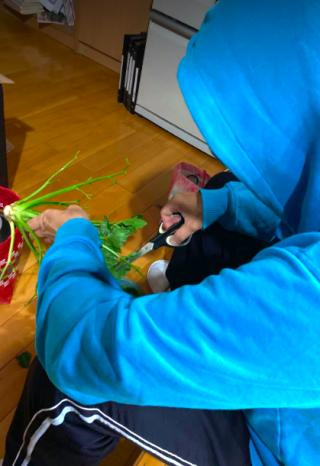照片展剪芹菜